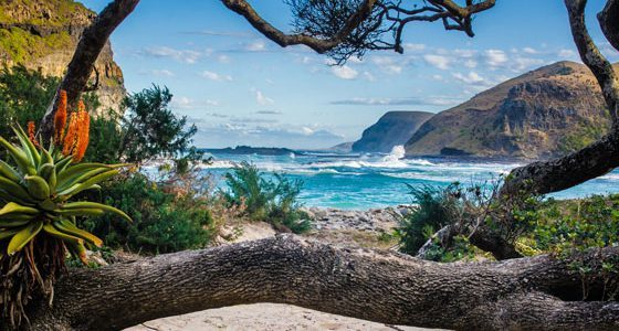 Wild Coast Coffee Bay Southafrica