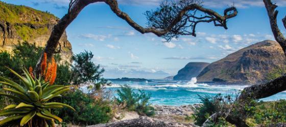 Wild Coast Coffee Bay Südafrika